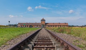 guided tur til Auschwitz fra krakow